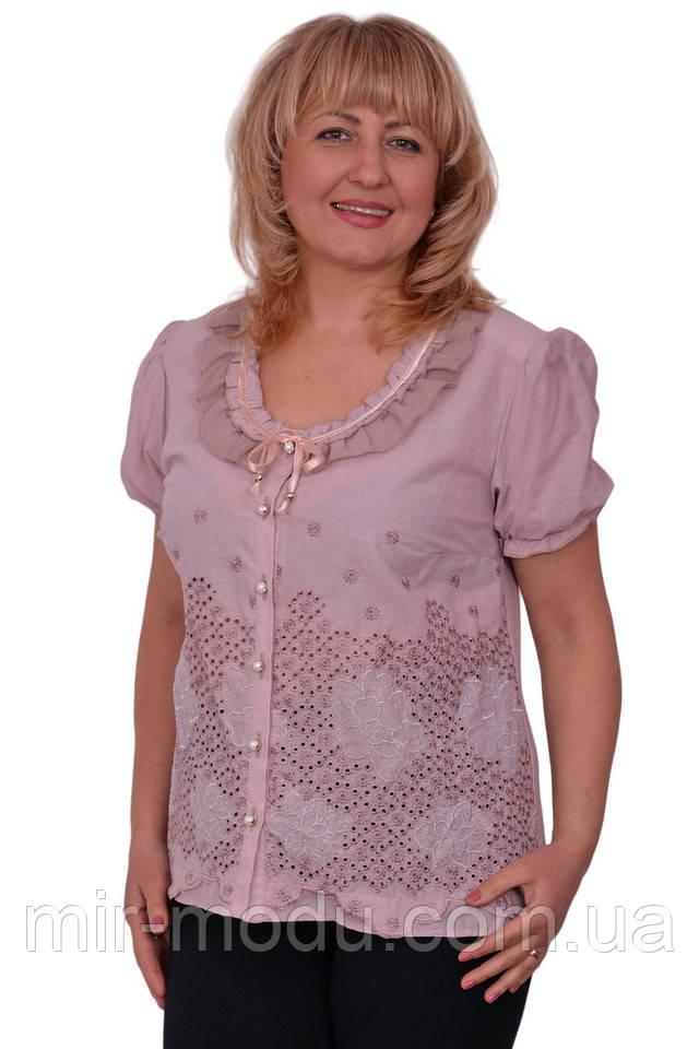 Блузки 54 Размера С Доставкой