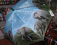 Детский зонт трость Lucky Rain