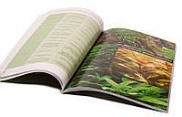 Книга Растительный аквариум. Азы и тонкости содержания растений в аквариуме. Сергей Ермолаев