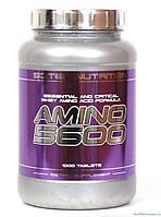 Scitec Nutrition Amino 5600 1000 таблеток Аминокислоты