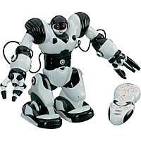Интерактивный Робот-гуманоид Робосапиен