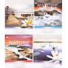 Тетрадь 48 клетка «Природа - 2»
