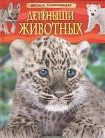 Детеныши животных  Детская энциклопедия