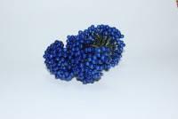 Калина синяя лакированная, соцветие из 50 ягод, диаметр ягоды 8 мм