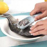 Инструмент для чистки чешуи рыбы.