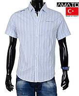 Мужская рубашка короткий рукав. Качество. Хлопок. Большие размеры. Мужская рубашка в полоску  коротким рукавом