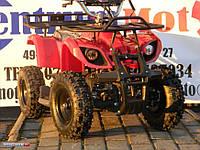 Квадроцикл бензиновый для дитей 50сс