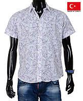 Молодежные мужские рубашки с коротким рукавом.