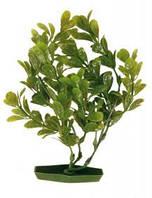 Растение для аквариума, Набор, пластиковое основание 3шт.