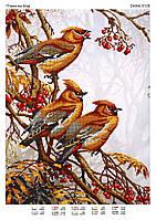 """Схема для частичной вышивки бисером """"Птицы на ветке"""""""