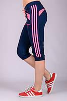 Спортивные женские бриджи Стрелки (синие)