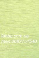 Креп бумага бледно салатовая №566