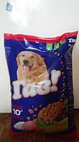 ГАВ! Сухой корм для взрослых собак Телятина с Рисом 10кг