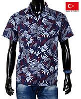 Яркая, фирменная рубашка для стильного и модного мужчины