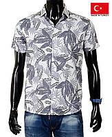 Стильная мужская рубашка -гавайка для пляжа и лета из хлопка