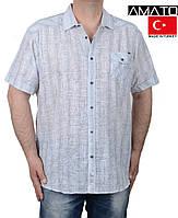 Рубашка мужская,короткий рукав.Летняя мужская одежда больших размеров.