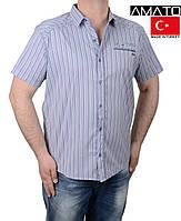 Мужская рубашка-тенниска АМАТО.Большие размеры.