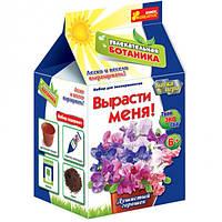 Набор для творчества Увлекательная ботаника Душистый горошек Ranok-creative