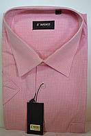 Мужская рубашка с коротким рукавом ENRICO
