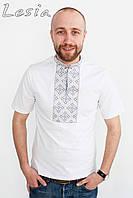 Чоловіча футболка Козацька сіра