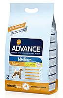 Корм для собак средних пород Advance Dog Medium Adult
