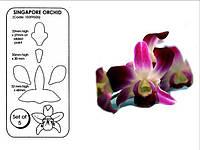 Набор катеров JEM Сингапурская орхидея 5шт.(код 01013)