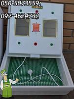 Инкубатор для яиц бытовой Квочка