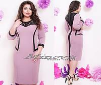 Платье Глория (размеры 48-58)