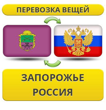 166971178_w640_h640_1.6_zaporozhe___uslu