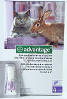 Средство от блох Адвантейж №80 для кошек 4-8 кг, 4 пипетки