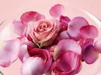 Гидролат розы 50мл