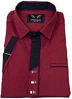 """Летняя рубашка """"Noseda"""". Бордовая. Приталенная (короткий рукав)"""