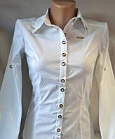 Рубашка белая стрейч-котон