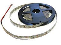 Светодиодная лента SMD 3014 (204 LED/m) IP20 белый Standart