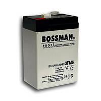 Аккумулятор 6 вольт BOSSMAN 3FM6