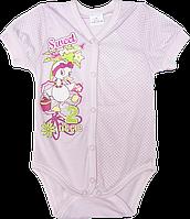 Детский -футболка, однотонная в горошек с принтом, кнопки посредине, тонкая, ТМ Garden Baby, р. 74-80, Украина
