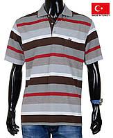 Яркая футболка поло мужская в полоску с воротником.