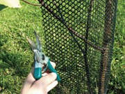 Сетка для защиты саженцев Ф-7 (0,8м*10м) / Сетка от зайцев