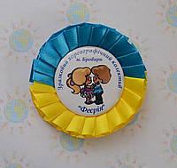 Значок с логотипом Феерия с розеткой
