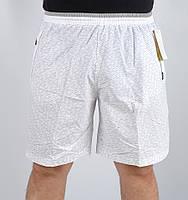 Мужские спортивные летние шорты (белые)