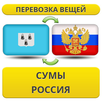 171256845_w640_h640_1.20_sumy_ross__uslu