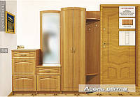 Модульная прихожая Ассоль светлая (Мебель - Сервис)
