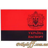"""Обложка для паспорта """"Україна - Паспорт"""""""