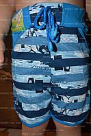 Шорты детские, детская одежда, р.60,64, рост98-104,110-116