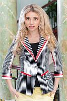 Модный женский пиджак в полоску 961 от производителя