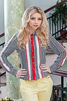 Модная женская рубашка с длинным рукавом 958 в полоску