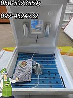 Инкубатор бытовой на 70 яиц. Рябушка (с цифровым терморегулятором)