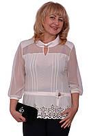 Очень красивая блуза больших размеров с декорированным низом