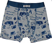 Трусы-шорты для мальчиков, серые с синим, рост 92, 104 см, ТМ Бемби