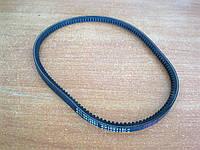 Ремень гидроусилителя Chery Amulet (10х715)